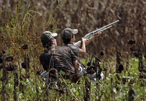 Private Dove Hunting